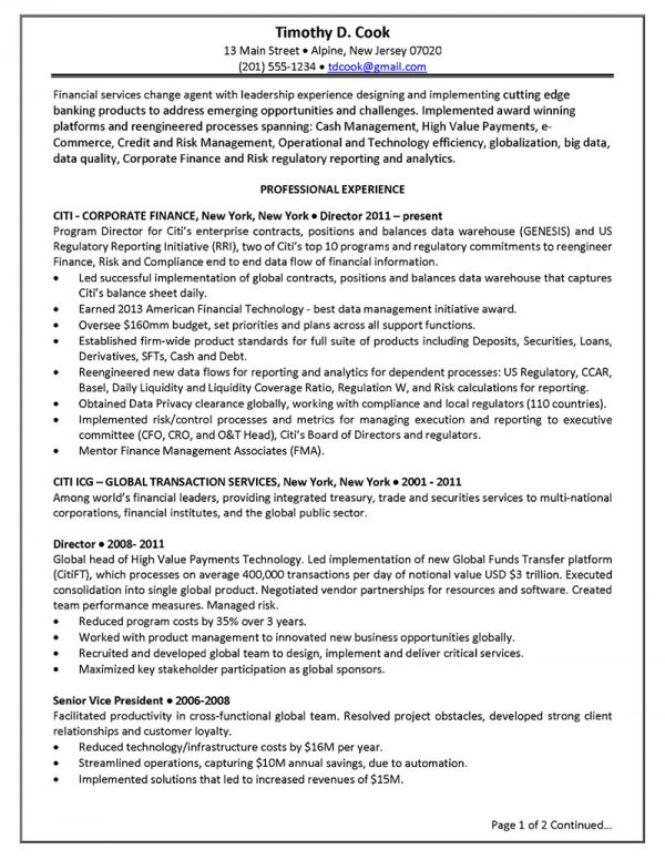 Senior Technology Executive - Before (Click to Zoom)